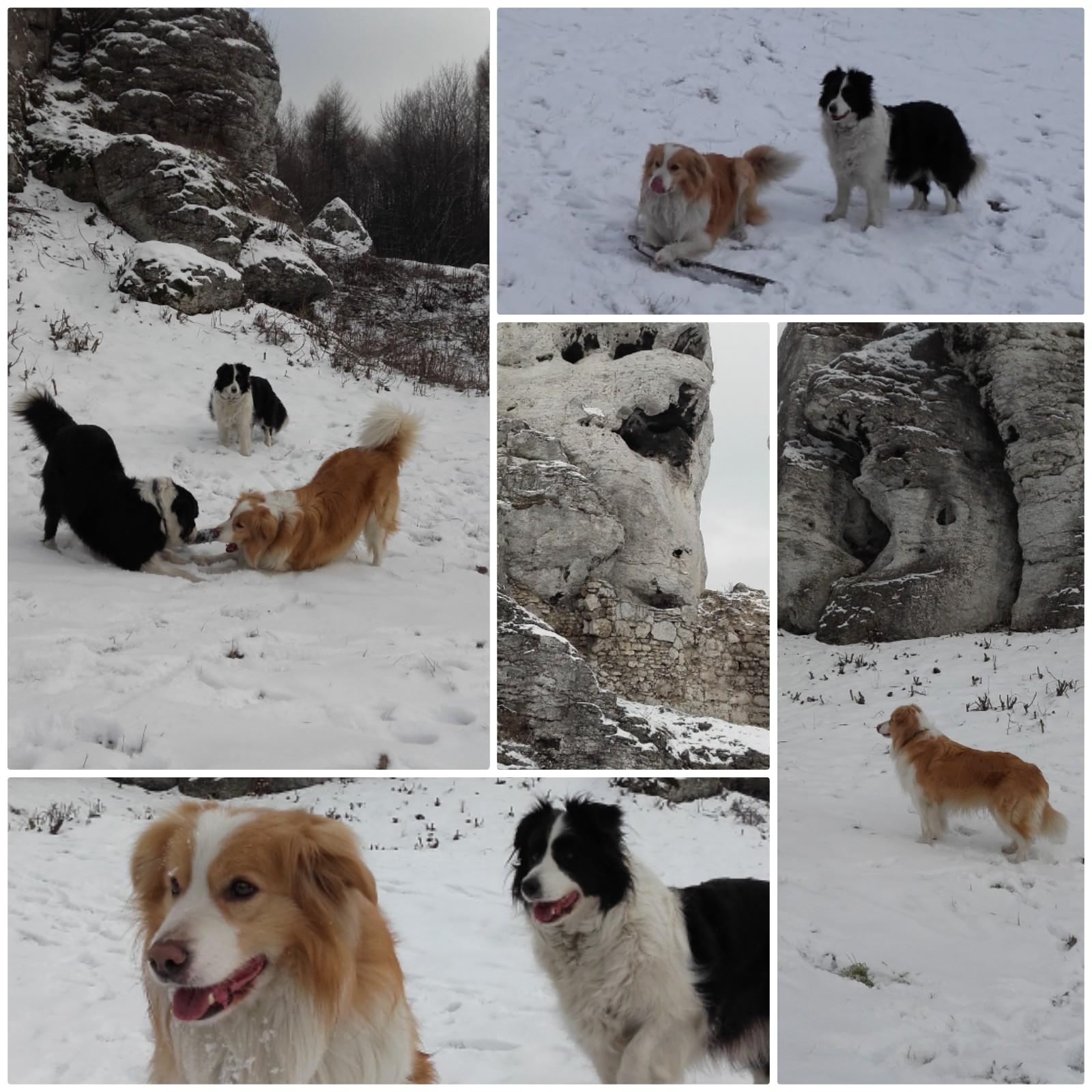 Zimowe Spacery w Ogrodzieńcu