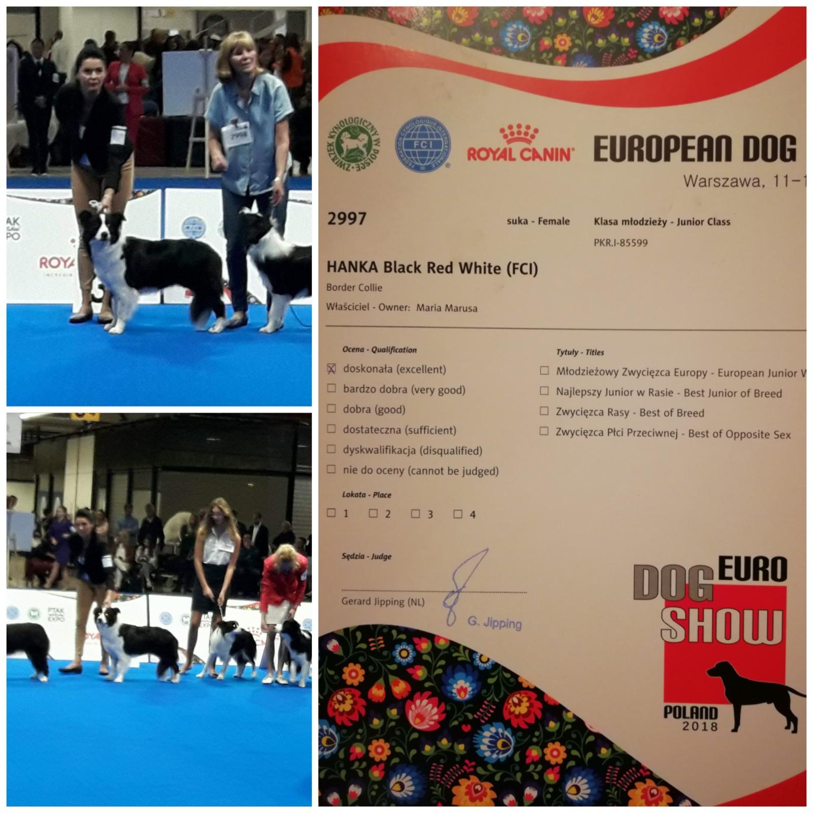 Euro Dog Show Warszawa 12 październik 2O18