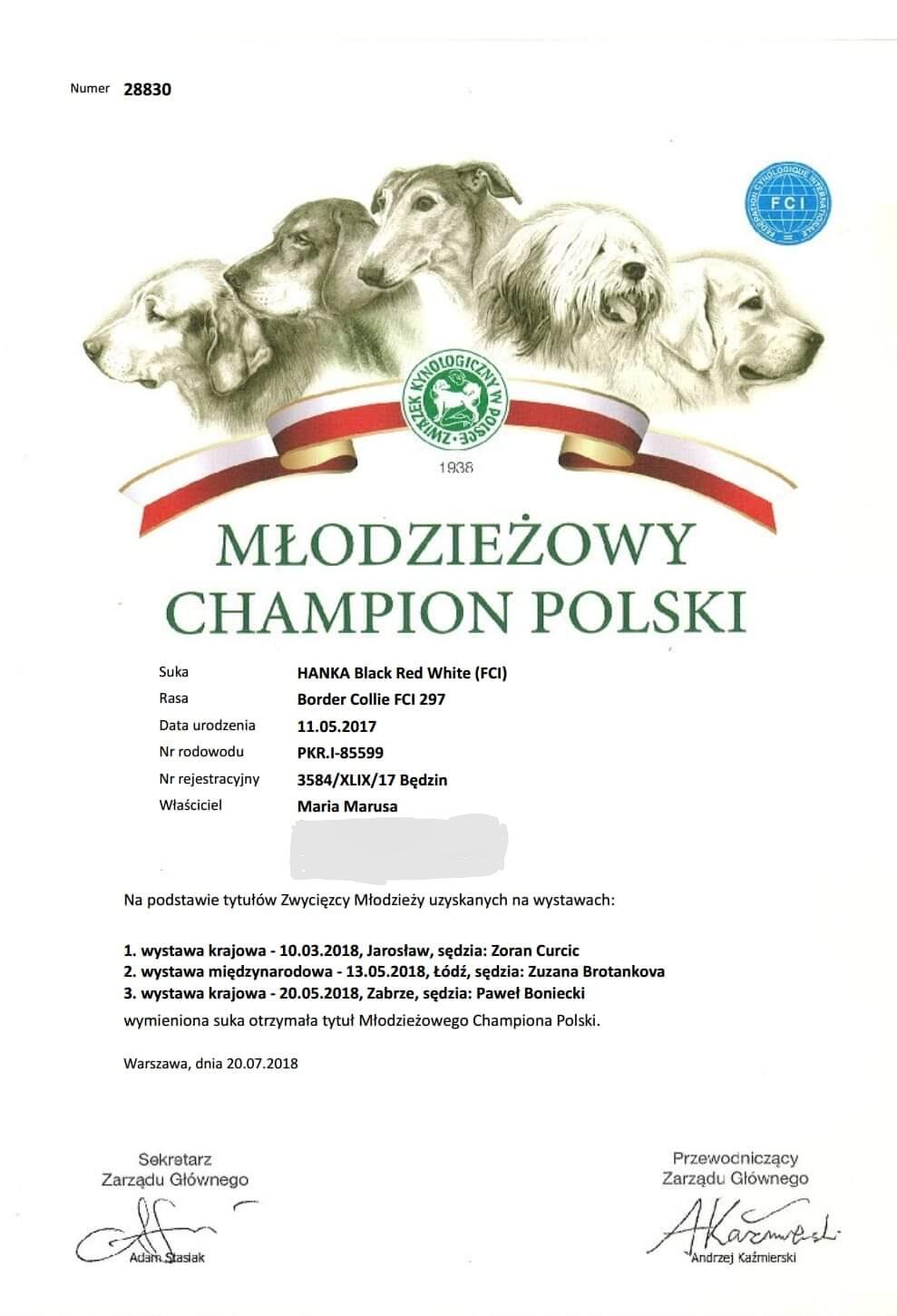 Młodzieżowego Championa Polski